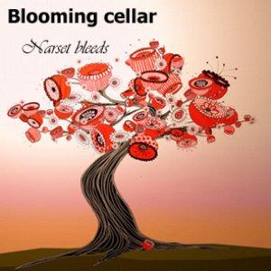 Image for 'Narset bleeds'