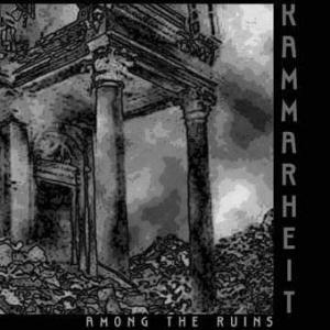 Image for 'Among the Ruins'