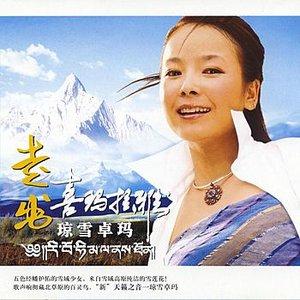 Image for 'Black Pu Lu (Hei Pu Lu)'