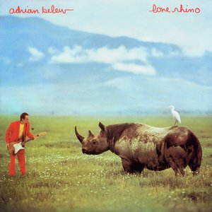 Imagen de 'The Lone Rhinoceros'
