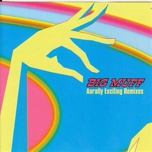 Imagen de 'Aurally Exciting Remixes'