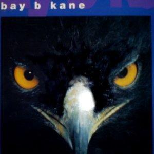 Bild för 'Bay B Kane'