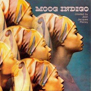 Image for 'Moog Indigo'
