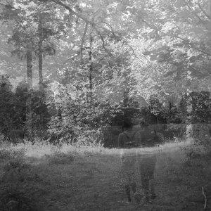 Image for 'Murralin Lane'