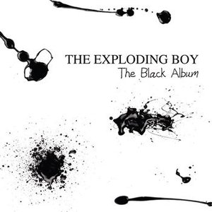 Image for 'The Black Album'