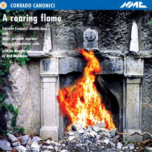 Image for 'A Roaring Flame'
