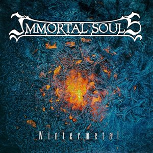Immagine per 'Wintermetal'