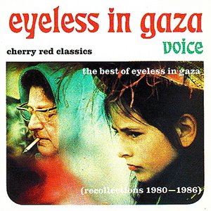 Image for 'Voice - The Best Of Eyeless In Gaza'