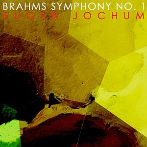 Image for 'Symphony No. 1 In C Minor, Op. 68: II. Andante Sostenuto'