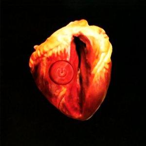 Image for 'Von Herzen EP [REI|DCC01|MDF]'