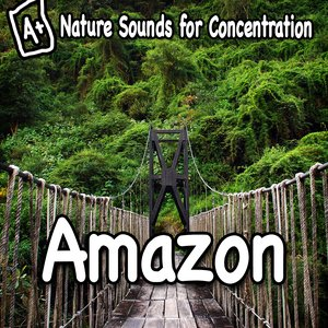 Image for 'Amazon Jungle Sounds for Clear Thinking'