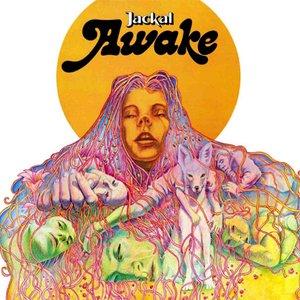 Image for 'Awake'