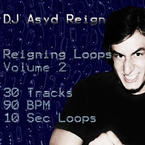 Image for 'Reigning Loops, Vol. 2'