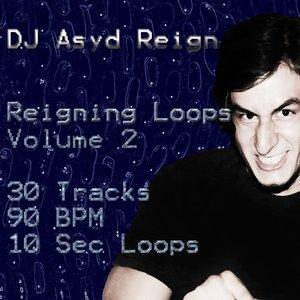 Bild för 'Reigning Loops, Vol. 2'