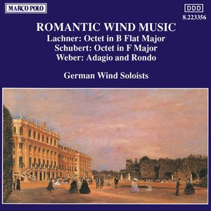 Image for 'Romantic Wind Music'