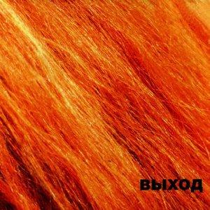 Imagen de 'Рыжий альбом'