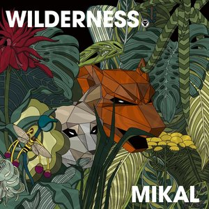 Image for 'Wilderness'