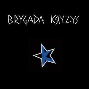 Image for 'Brygada Kryzys'