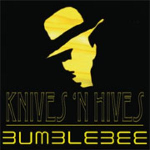 Image for 'Knives 'n Hives'