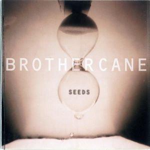 Imagem de 'Seeds'