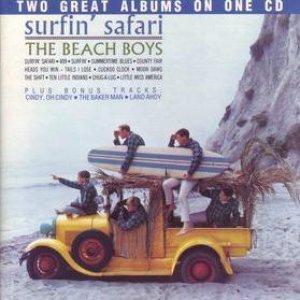 Bild för 'Surfin' Safari / Surfin' USA'