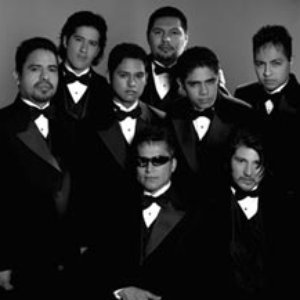 Image for 'Grupo Mojado'