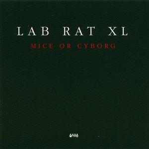 Image for 'Lab Rat 1'