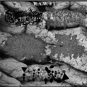 Image for 'R.A.W.1'