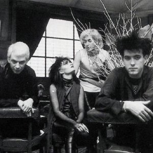 """Siouxsie and the Banshees""的封面"
