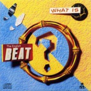 Bild för 'What Is Beat?'