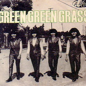 Image for 'Green Green Grass'