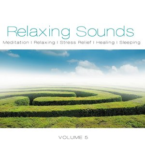 Image pour 'Relaxing Sounds, Vol. 5'
