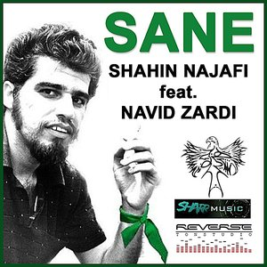 Image for 'Sane (feat. Navid Zardi)'
