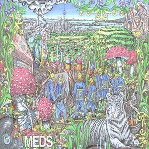 Image for 'MEDS EP'