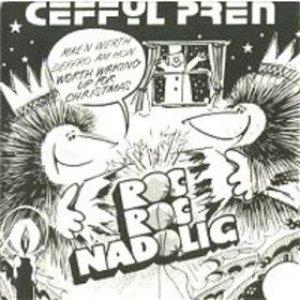 Image for 'Ceffyl Pren'