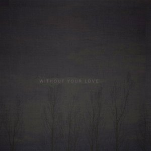 Image for 'Without Your Love'