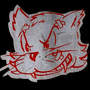 Imagem de 'Secret Cat'