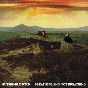 Bild für 'Breathing And Not Breathing'