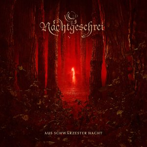 Image for 'Aus schwärzester Nacht'