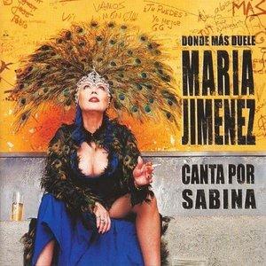 Image pour 'Donde más duele (Canta por Sabina)'