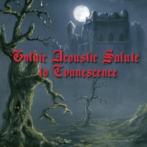 Image for 'A Gothic Acoustic Salute To Evanescence'