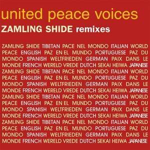 Image for 'Zamling Shide (The Remixes)'