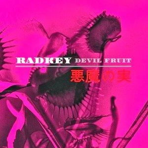 Image for 'Devil Fruit'