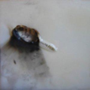 Image for 'Sierra Myst'