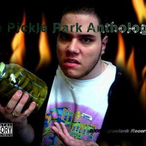 Image for 'Pickle Park Sessions'