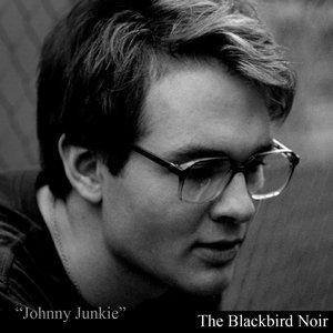 Image for 'The Blackbird Noir'