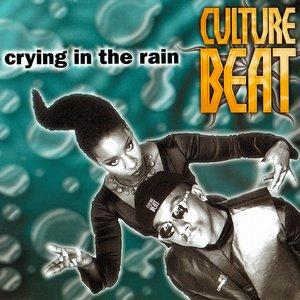 Imagen de 'Crying in the Rain (Radio edit)'