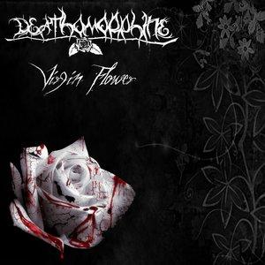 Image for 'Virgin Flower'
