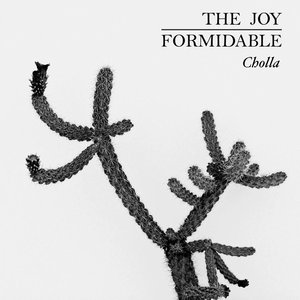 Image for 'Cholla'