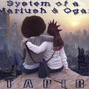 Image for 'Tapir'